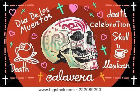 Calavera greeting banner, realistic vector skull, illustration for your Design.