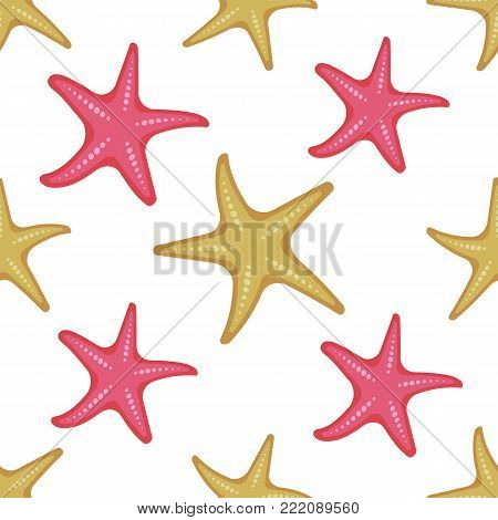 Seamless pattern shells and starfish on white background, cartoon illustration of beach summer background. Vector. Vector