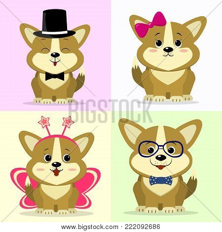 A set of illustrations of cute dog corgi characters in cartoon style. In a hat and a butterfly, with a bow on his head, in a butterfly suit, wearing glasses and a butterfly tie on a light background. Vector, flat design.