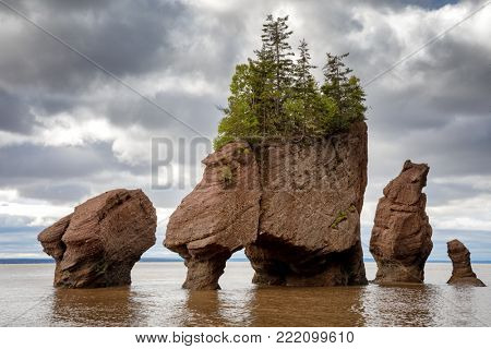 The flowerpot rock formations at Hopewell Rocks, Bay of Fundy, New Brunswick. The extreme tidal range of the bay makes them only accessible at low tide.