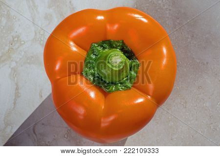 Orange bell pepper on kitchen counter top. It is a cultivar group of the species Capsicum annuum. Cultivars of the plant produce fruits in different colors, including red, yellow, orange, and green.