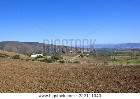 Spanish Meadow And Scenery