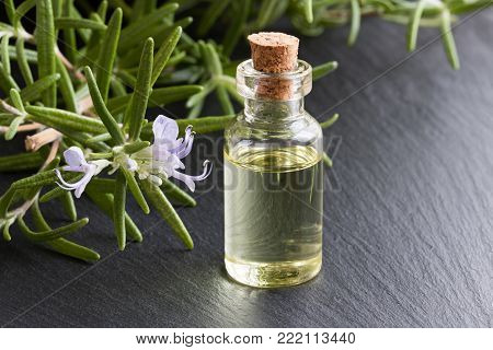 A bottle of rosemary essential oil with fresh blooming rosemary twigs on a dark background