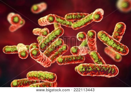 Bartonella quintana bacteria, the causative agent of trench fever, formerly known as Rochalimaea bacteria, 3D illustration