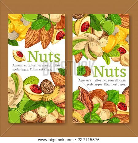 Set of colourful vertical banners with different kinds of nuts. Vector illustration of templates. Realistic kernels layoutes are good for advertising kernels products.