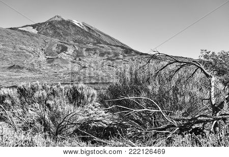 The Teide volcano (Pico del Teide) in Tenerife,  Canary Islands. Black and white landscape