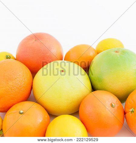 Fruit's still life. Citrus fruits - lemon, orange, grapefruit, sweetie and pomelo isolated on white background.
