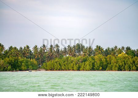 Scenic view of ocean and tropical coastline