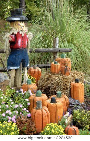 Beautiful Autumn Display