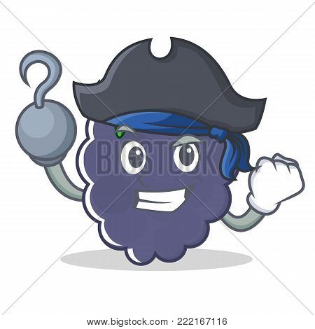 Pirate blackberry character cartoon style vector illustration
