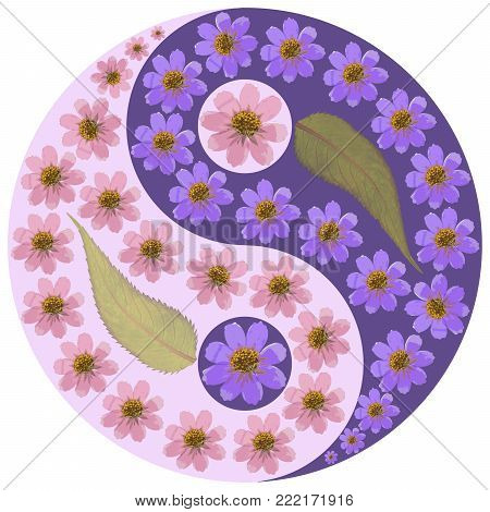 Floral Yin Yang symbol. Geometric Yin Yang symbol drawing made by plants on ultra-violet background in oriental style. Yin Yang symbol from dried pressed flowers, petals and leaves.