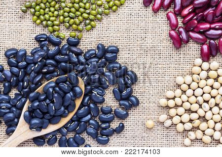 Many types of beans are separated in a spoon on a sackcloth. green bean, soybean, black bean, and red bean.