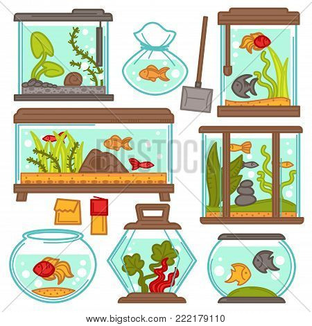 Aquariums of different shapes with tropical fishes and plants. Vector fish tank set of filtration system, heater, scoop net and thermometer and maintenance equipment or fish feed