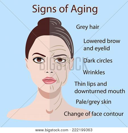 Vector signs of aging face with two types of skin, young and old isolated on blue background