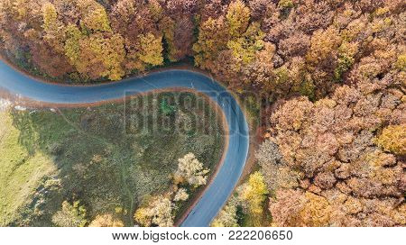 Aerial view of road in the mountains with serpentine going through the red trees.