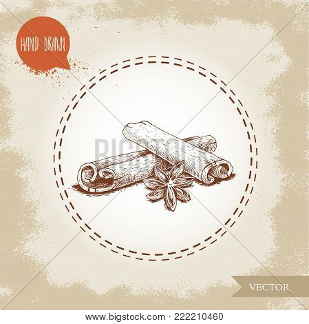 Hand drawn sketch style cinnamon sticks and anise composition isolated on vintage background. Vector healthy spice and condiment illustration.