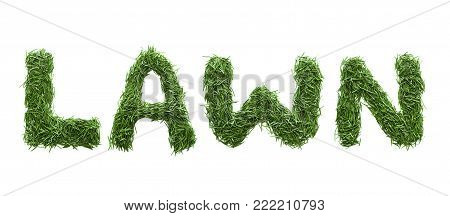 lawn made of green grass isolated on white