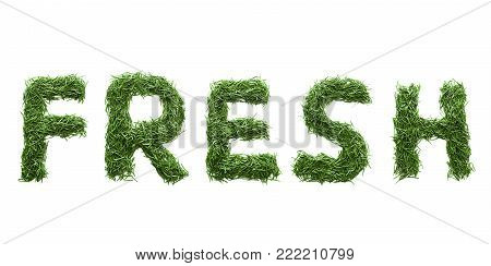 fresh made of green grass isolated on white