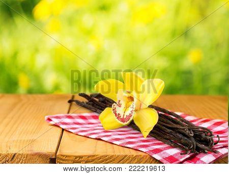 Flower pod vanilla pods table yellow background