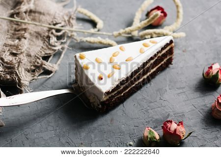Sliced tasty cake with cheese mascarpone and truffle cream, chocolate icing and white biscuit. Impregnated with cognac syrup with cocoa on concrete background. Cheesecake with nuts