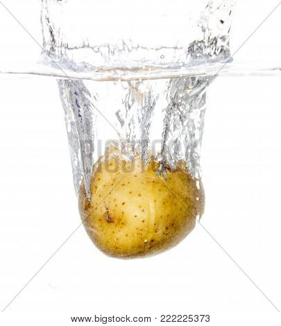 potatoes in water isolated on white background .