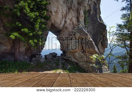 Coniferous Forests In The Mountains