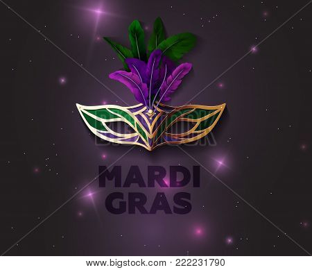 Carnival Golden Mask With Feathers On a Mysterious Luminous Background. Vector Illustration for Mardi Gras. EPS 10