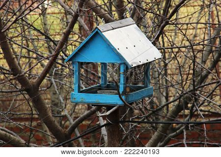 blue garden bird feeder. care of sparrows, cilia and other insectivorous and grainspecious birds in winter.