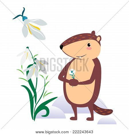 Happy Groundhog Day design with cute marmot holds flower - white snowdrop, prediction of weather, animal climbed out of ground burrows after wintering, vector illustration.