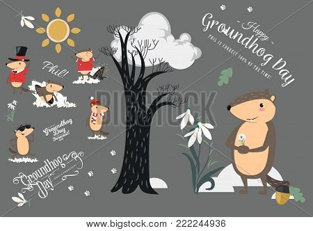 Happy Groundhog Day design with cute marmot holds flower - white snowdrop, prediction of weather, animal climbed out of ground burrows after wintering, hog gipernation vector illustration.