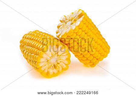 yellow ear of corn isolated on white background