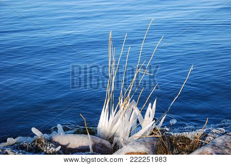 The winter is comimg with ice covered straws and rocks by the water