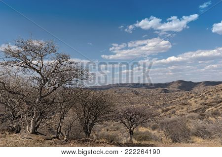 View of the Eros Mountains (Erosberge) north of Windhoek, Namibia