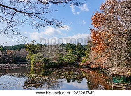 Kyoto, Japan - Dec 26, 2015. People visit a autumn garden in Kyoto, Japan. Kyoto was the capital of Japan for over a millennium, and carries a reputation as its most beautiful city.