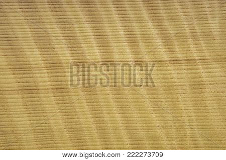 Veneer from wood sequoi with a texture FRISSE. The background is yellowish in color. The texture is shallow. Backdrop or background wooden.