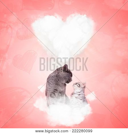 two in love cats looking at each other while sitting on a puffy cloud with big heart in the background, on valentine's day