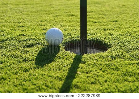 Golf Ball On The Green Near To Pitch.