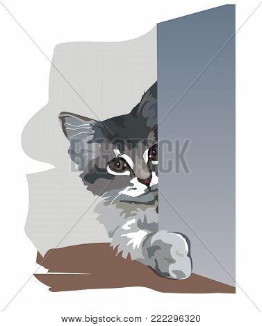 A kitten was harboured in an ambush