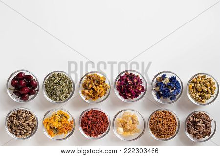 Selection of herbs on white background with copy space - dried rose hips, horsetail, mullein, rose petals, cornflower, chamomile, milk thistle, calendula, sandalwood, frankincense resin, fenugreek, oak bark
