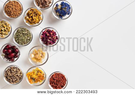 Selection of herbs on white background with copy space - dried rose hips, horsetail, mullein, rose petals, milk thistle, calendula, sandalwood, chamomile, cornflower, oak bark, frankincense resin, fenugreek