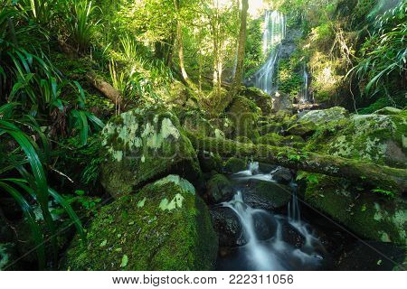 Chalahn Falls on Toolona Creek Circuit in Lamington National Park, Gold Coast, QLD, Australia