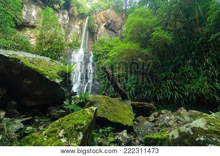 Toolona waterfall in rainforest on Toolona Circuit, Lamington National Park, QLD, Australia