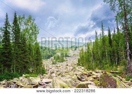Conglomeration of giant rocks in the mountain forest. Podnebesnye Zubja, Kuznetsk Alatau, Siberia