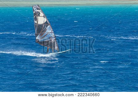 windsurfer on a board under a sail against the background of the sea, wind and waves. Red Sea Egypt.