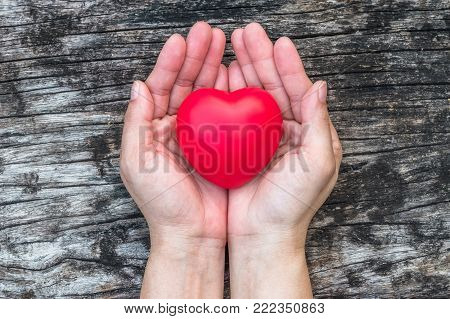 Women's heart health care, medical concept with healthy red love heart on aging hand support