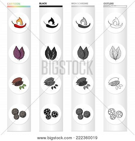 Chili pepper, spice basil, coffee beans, black pepper. Spices set collection icons in cartoon black monochrome outline style vector symbol stock illustration .