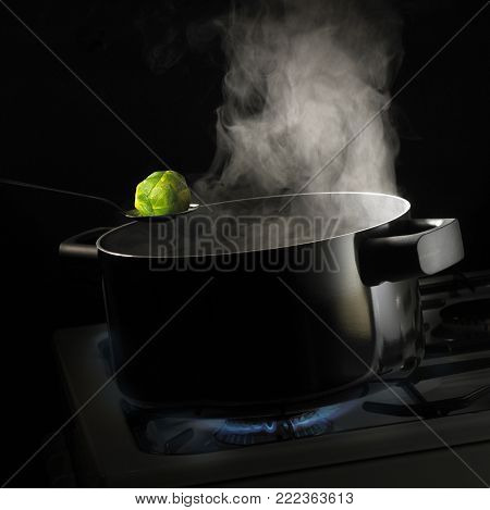 SPOON HOLDING BRUSSELS SPROUT OVER PAN OF BOILING WATER WITH RISING STEAM SIMMERING ON GAS COOKER