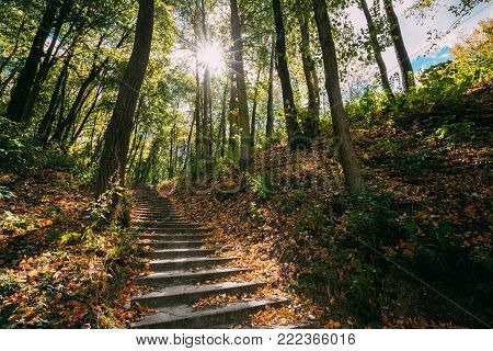 Yurovichi, Belarus. Stairs On Carpet Of Upper Period Of The Paleolithic - 26 Thousand Years Ago, Which Occupying Terraced Slope Of Left Bank Of Pripyat River.