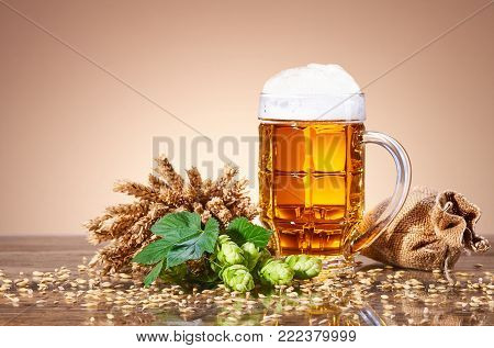 A glass beer mug, pint of fresh beer, natural components of beer, ears of wheat, ripe fruit hops, ingredients for the preparation of beer, bag of ripe grain