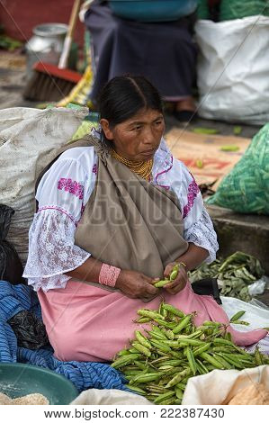 Otavalo, Ecuador - December 30, 2017: closeup of an indigenous woman cleaning peas in the weekly farmers market